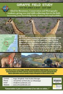 South Africa Giraffe Field Study - July 19 - Brochure