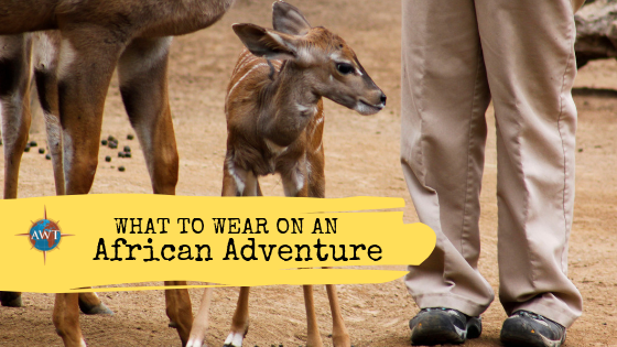 What to Wear On An African Adventure - Cut off image of boots and trousers suitable for African Adventure