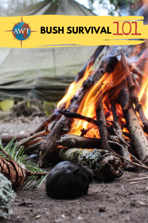 Bush Survival 101 Blog Image - Close up image of a camp fire with tent in the background